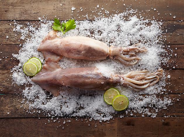 阿根廷魷魚 1